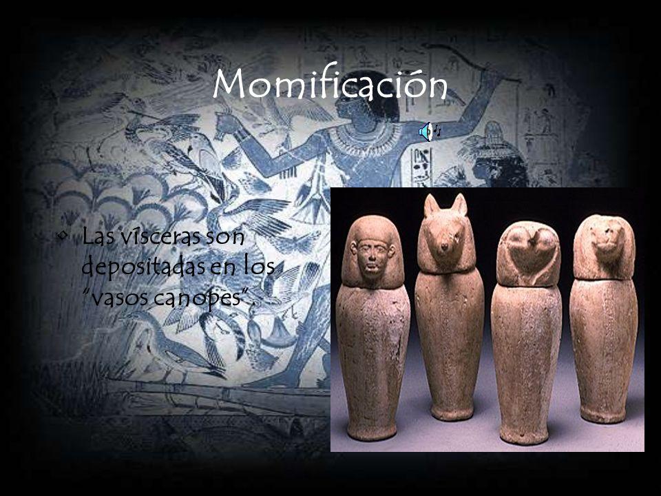 Momificación Las vísceras son depositadas en los vasos canopes.
