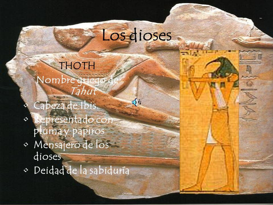 Los dioses THOTH Nombre griego de Tahut Cabeza de Ibis. Representado con pluma y papiros Mensajero de los dioses Deidad de la sabiduría
