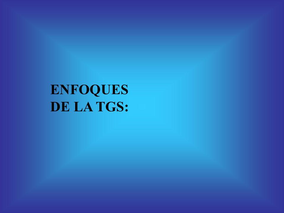 ENFOQUES DE LA TGS: