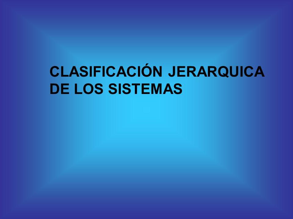 CLASIFICACIÓN JERARQUICA DE LOS SISTEMAS