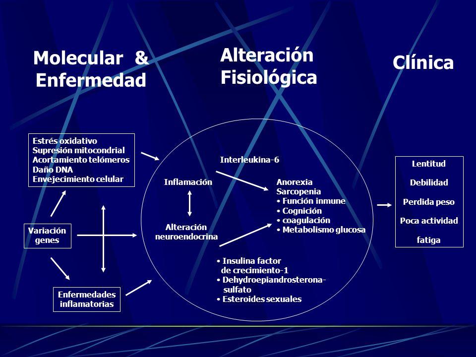 Molecular & Enfermedad Alteración Fisiológica Clínica Estrés oxidativo Supresión mitocondrial Acortamiento telómeros Daño DNA Envejecimiento celular V