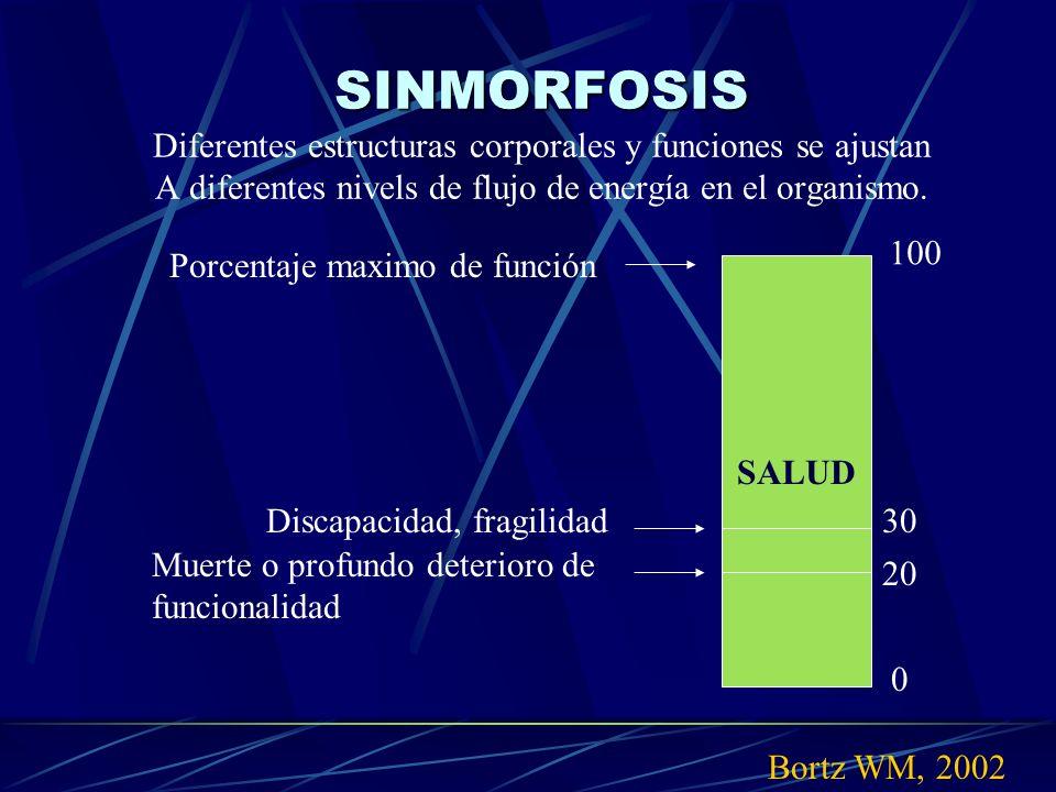 SINMORFOSIS SINMORFOSIS Diferentes estructuras corporales y funciones se ajustan A diferentes nivels de flujo de energía en el organismo. Bortz WM, 20