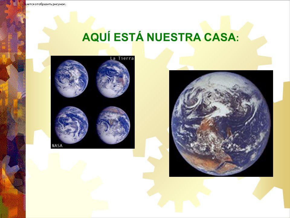 ALGUNOS ENFOQUES SOBRE LA NATURALEZA Y LOS HUMANOS Los Seres Humanos vs.