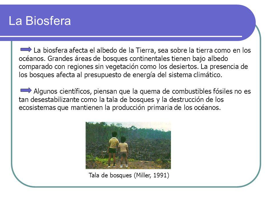 La Biosfera La biosfera afecta el albedo de la Tierra, sea sobre la tierra como en los océanos. Grandes áreas de bosques continentales tienen bajo alb