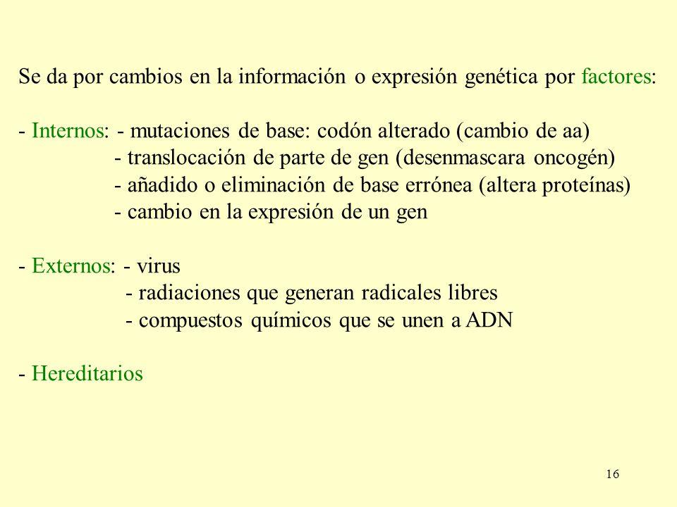 16 Se da por cambios en la información o expresión genética por factores: - Internos: - mutaciones de base: codón alterado (cambio de aa) - translocac