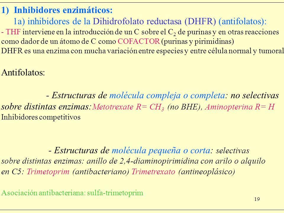 19 1) Inhibidores enzimáticos: 1a) inhibidores de la Dihidrofolato reductasa (DHFR) (antifolatos): - THF interviene en la introducción de un C sobre e