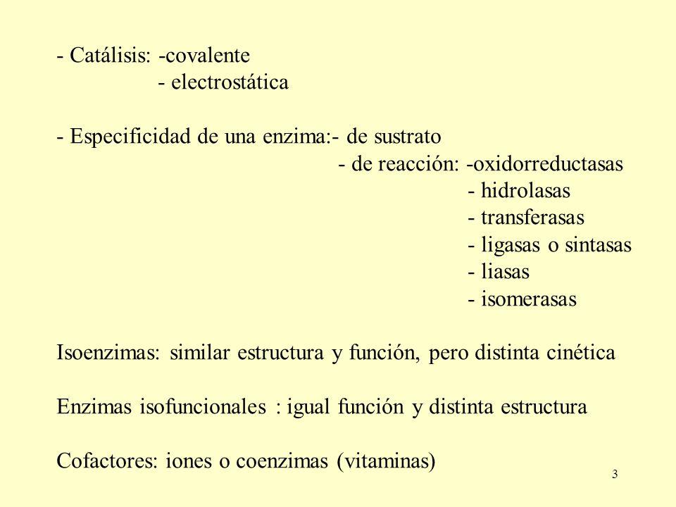 3 - Catálisis: -covalente - electrostática - Especificidad de una enzima:- de sustrato - de reacción: -oxidorreductasas - hidrolasas - transferasas -