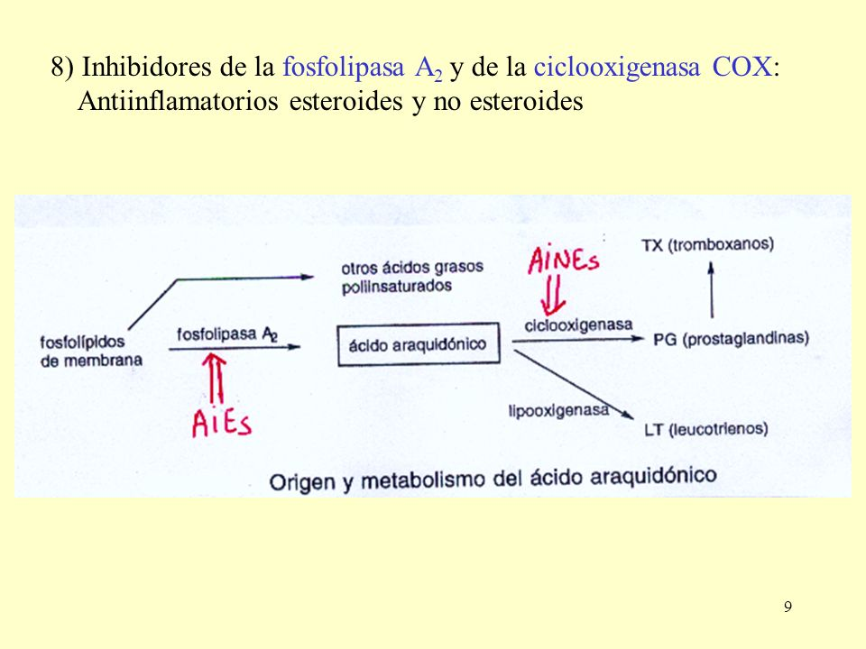 9 8) Inhibidores de la fosfolipasa A 2 y de la ciclooxigenasa COX: Antiinflamatorios esteroides y no esteroides