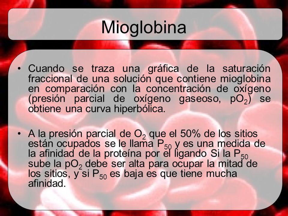 Mioglobina Cuando se traza una gráfica de la saturación fraccional de una solución que contiene mioglobina en comparación con la concentración de oxíg