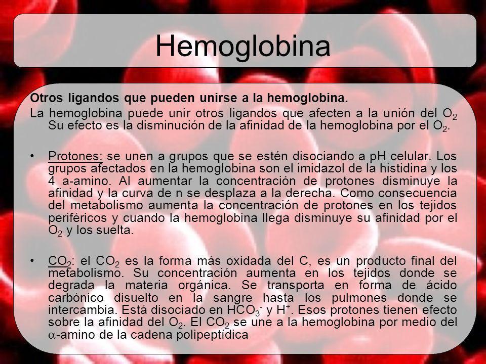 Hemoglobina Otros ligandos que pueden unirse a la hemoglobina. La hemoglobina puede unir otros ligandos que afecten a la unión del O 2 Su efecto es la