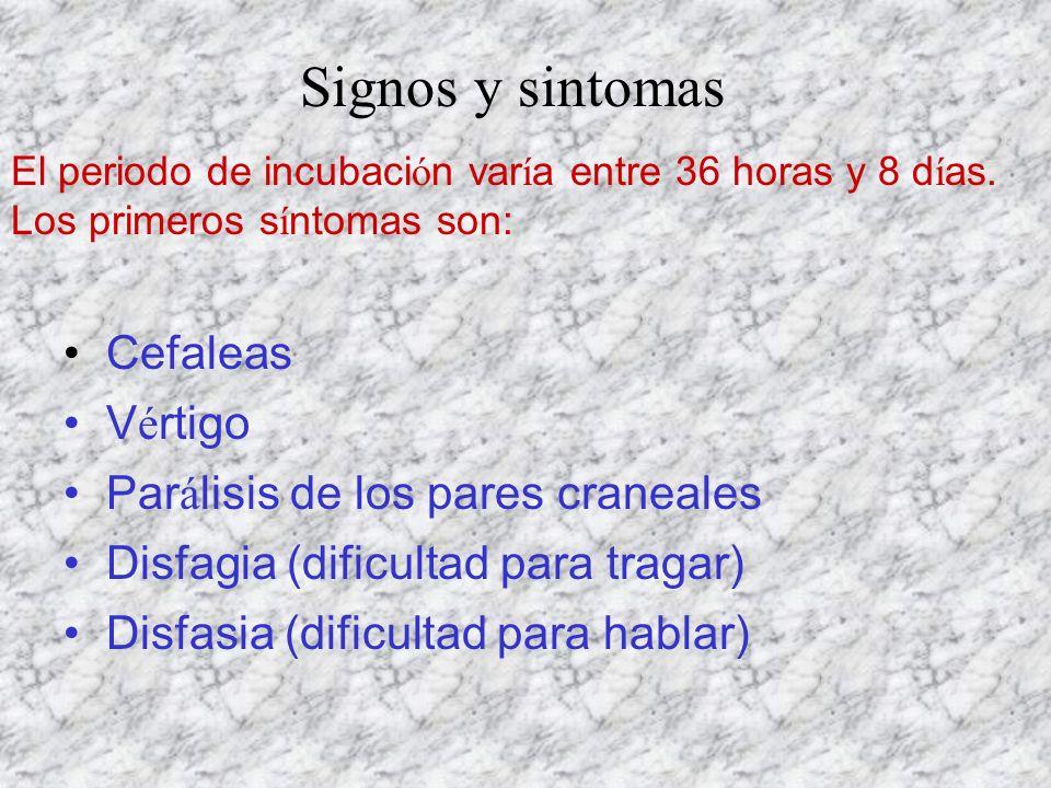 Cefaleas V é rtigo Par á lisis de los pares craneales Disfagia (dificultad para tragar) Disfasia (dificultad para hablar) El periodo de incubaci ó n v