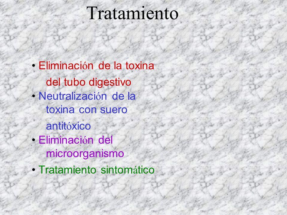 Eliminaci ó n de la toxina del tubo digestivo Neutralizaci ó n de la toxina con suero antit ó xico Eliminaci ó n del microorganismo Tratamiento sintom