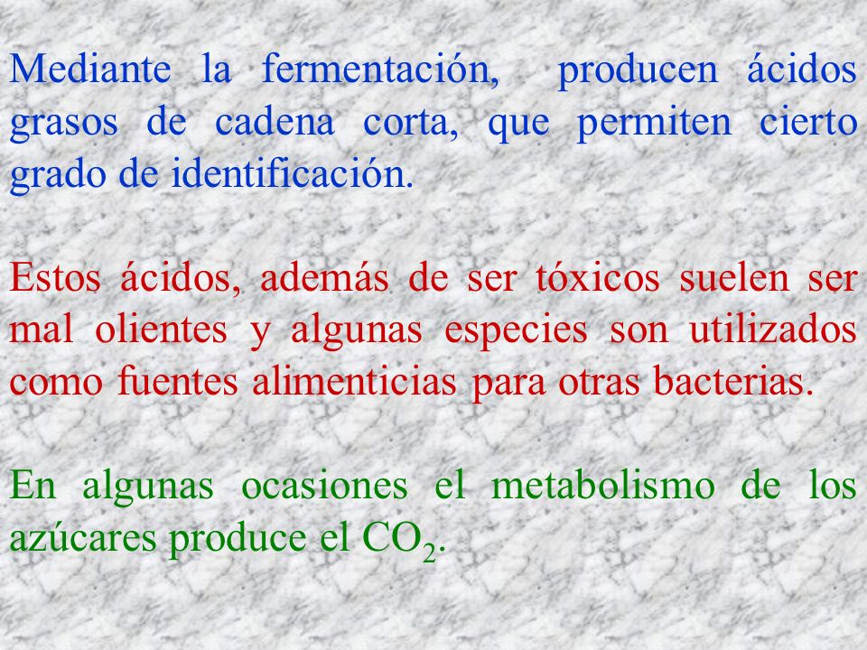 Mediante la fermentación, producen ácidos grasos de cadena corta, que permiten cierto grado de identificación. Estos ácidos, además de ser tóxicos sue