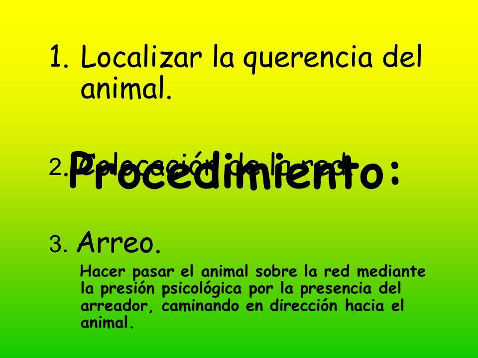 Procedimiento: 1.Localizar la querencia del animal.