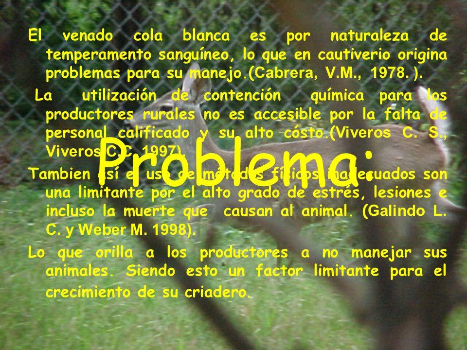 Problema: El venado cola blanca es por naturaleza de temperamento sanguíneo, lo que en cautiverio origina problemas para su manejo.( Cabrera, V.M., 1978.
