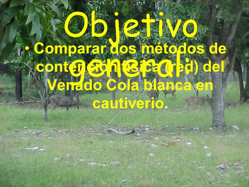 Objetivo general: Comparar dos métodos de contención física (red) del Venado Cola blanca en cautiverio.