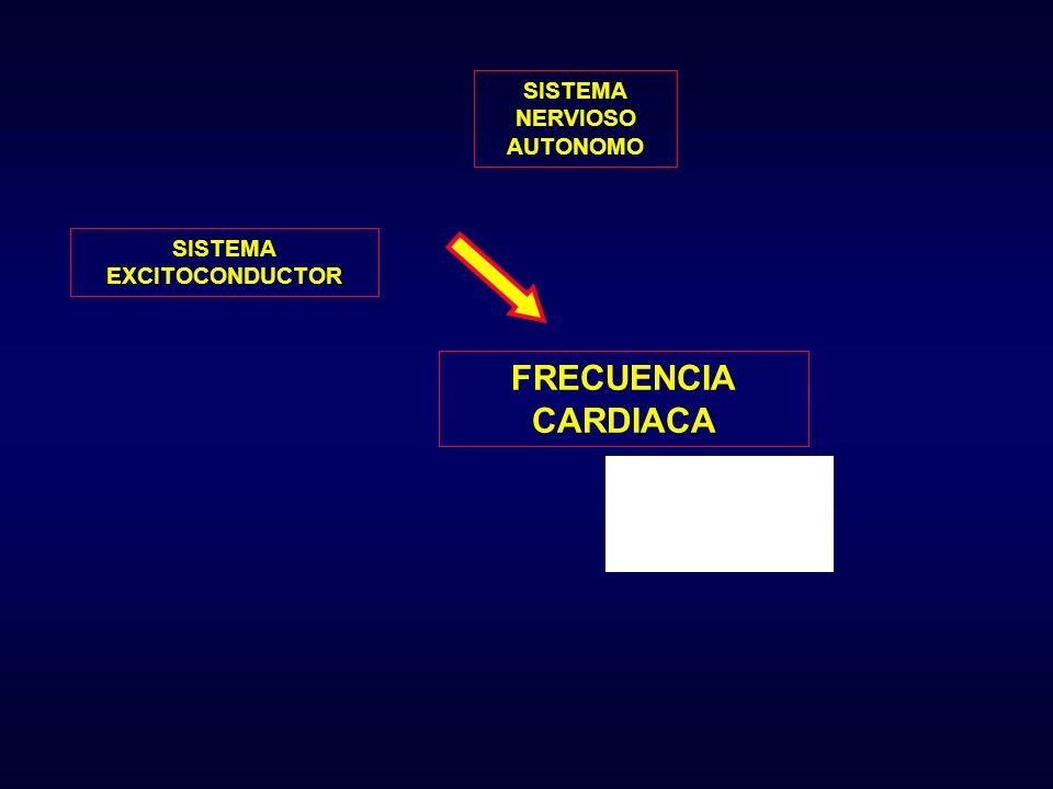 FACTORES QUE INFLUYEN EN EL COMPORTAMIENTO CARDIACO DEL NIÑO CANTIDAD DE MIOFILAMENTOS CON CAPACIDAD CONTRACTIL PRECARGA O RESERVA DIASTÓLICA LIMITADA SISTEMA ADRENERGICO INMADURO ESCASA RESPUESTA DE ESTIMULO CONTRACTIL CONSUMO DE OXIGENO, FRECUENCIA CARDIACA y DEBITO POR m 2 s.c.
