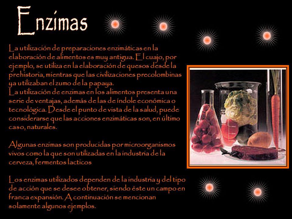 La utilización de preparaciones enzimáticas en la elaboración de alimentos es muy antigua. El cuajo, por ejemplo, se utiliza en la elaboración de ques