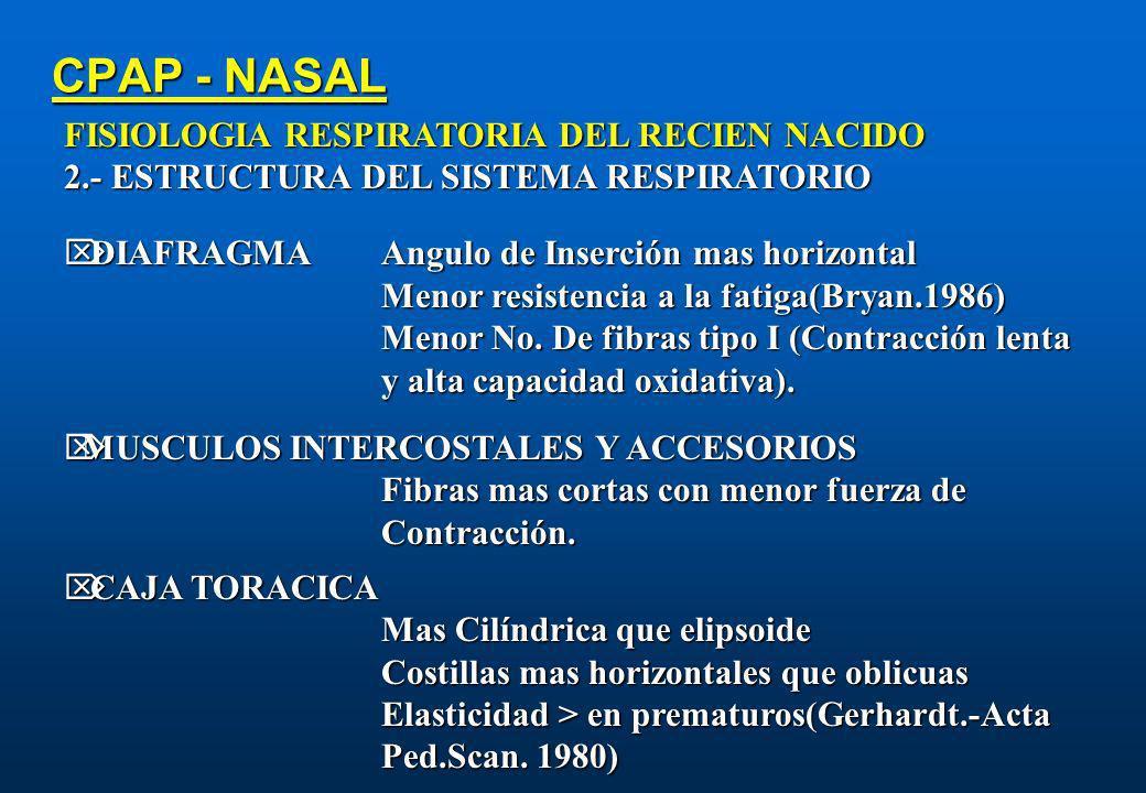 CPAP - NASAL FISIOLOGIA RESPIRATORIA DEL RECIEN NACIDO 2.- ESTRUCTURA DEL SISTEMA RESPIRATORIO DIAFRAGMAAngulo de Inserción mas horizontal DIAFRAGMAAn