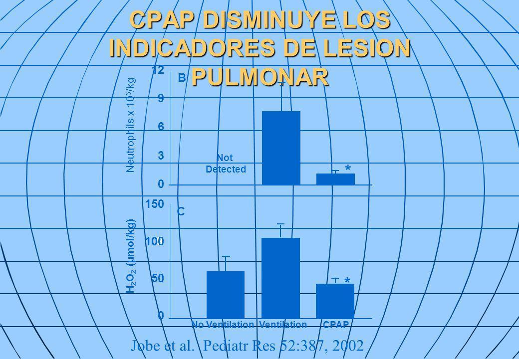 CPAP DISMINUYE LOS INDICADORES DE LESION PULMONAR Jobe et al. Pediatr Res 52:387, 2002 Not Detected No VentilationVentilationCPAP Neutrophils x 10 5 /