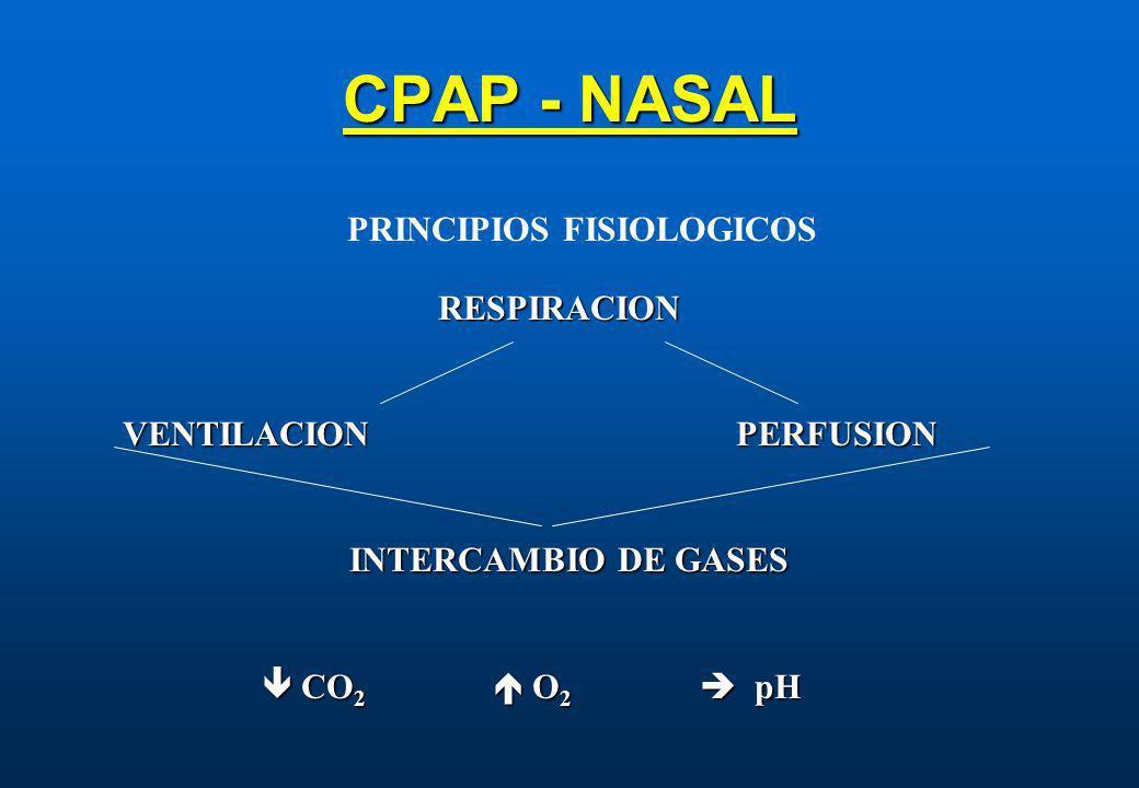 CPAP - NASAL RESPIRACION VENTILACION PERFUSION INTERCAMBIO DE GASES CO 2 O 2 pH CO 2 O 2 pH PRINCIPIOS FISIOLOGICOS