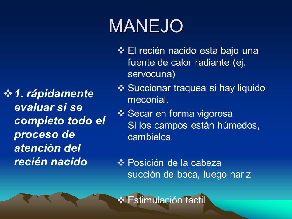 MANEJO 2.