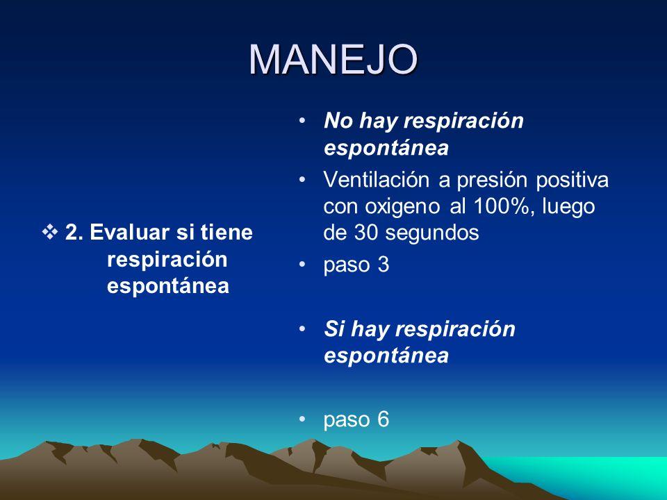 BOLSA DE REANIMACION (AMBU) MASCARILLA FACIAL