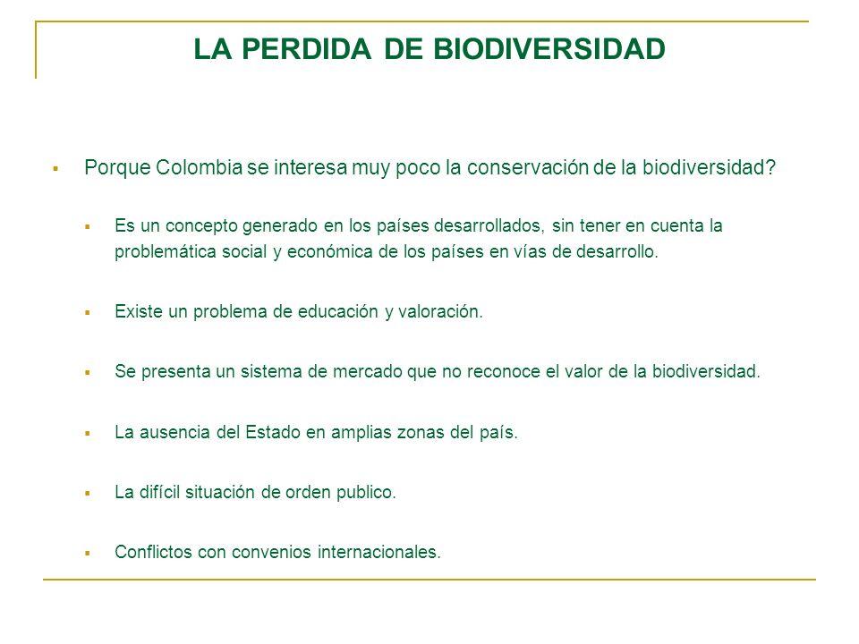 LA PERDIDA DE BIODIVERSIDAD Porque Colombia se interesa muy poco la conservación de la biodiversidad? Es un concepto generado en los países desarrolla