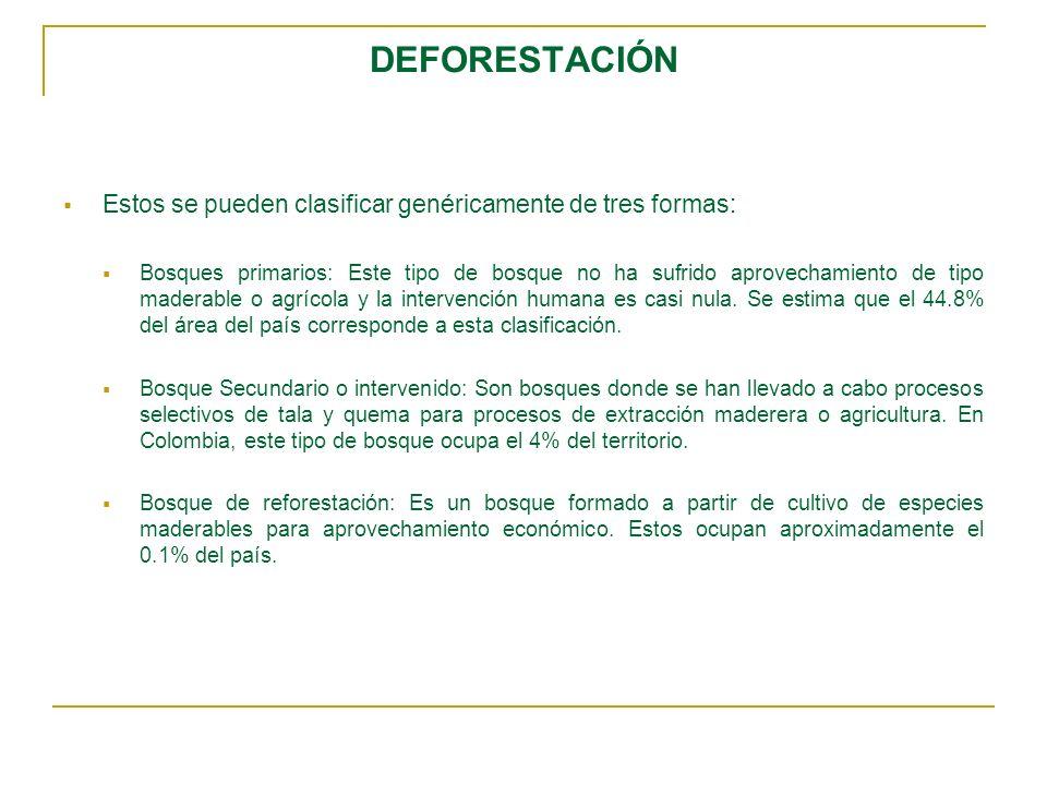DEFORESTACIÓN Estos se pueden clasificar genéricamente de tres formas: Bosques primarios: Este tipo de bosque no ha sufrido aprovechamiento de tipo ma