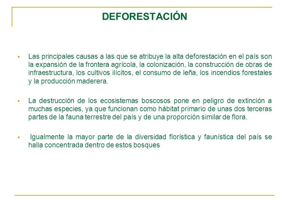 DEFORESTACIÓN Las principales causas a las que se atribuye la alta deforestación en el país son la expansión de la frontera agrícola, la colonización,
