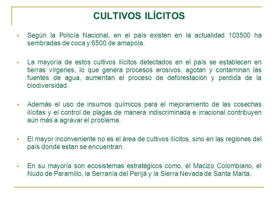 CULTIVOS ILÍCITOS Según la Policía Nacional, en el país existen en la actualidad 103500 ha sembradas de coca y 6500 de amapola. La mayoría de estos cu