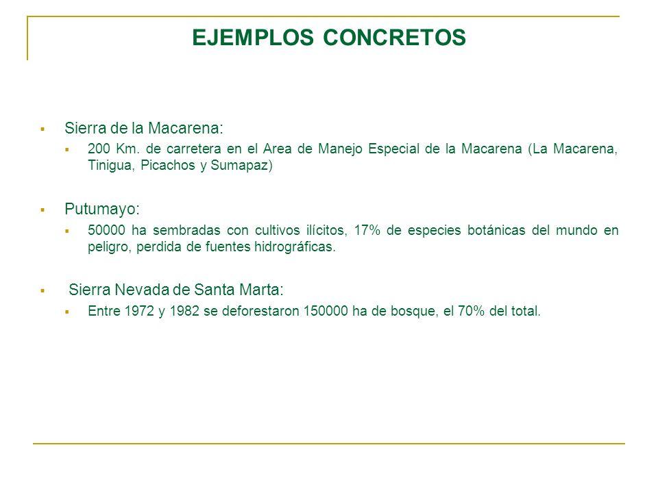 EJEMPLOS CONCRETOS Sierra de la Macarena: 200 Km. de carretera en el Area de Manejo Especial de la Macarena (La Macarena, Tinigua, Picachos y Sumapaz)