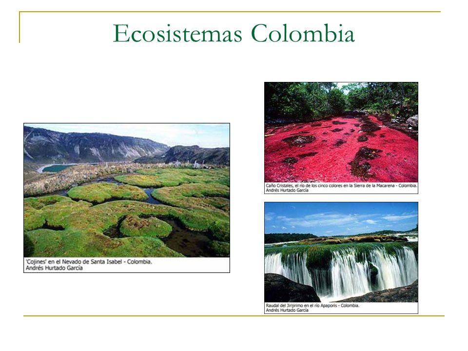 Ecosistemas Colombia