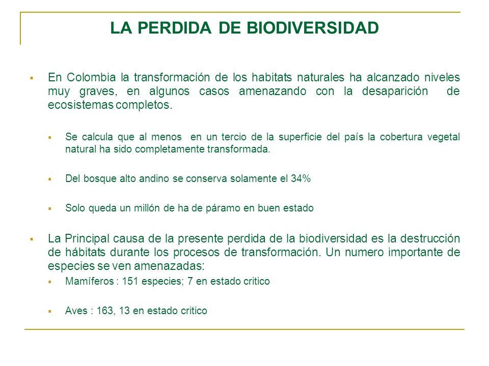 LA PERDIDA DE BIODIVERSIDAD En Colombia la transformación de los habitats naturales ha alcanzado niveles muy graves, en algunos casos amenazando con l