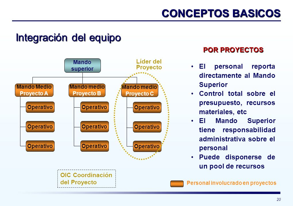 20 CONCEPTOS BASICOS Integración del equipo Mando superior Mando Medio Proyecto A Operativo Mando medio Proyecto B Mando medio Proyecto C Operativo Pe