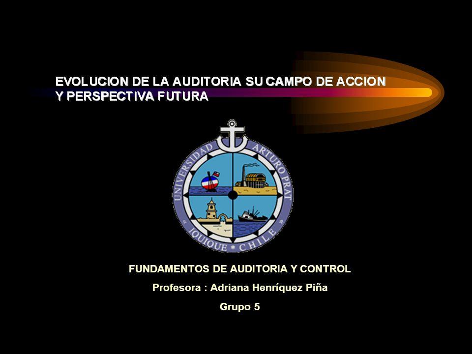 FUNDAMENTOS DE AUDITORIA Y CONTROL Profesora : Adriana Henríquez Piña Grupo 5