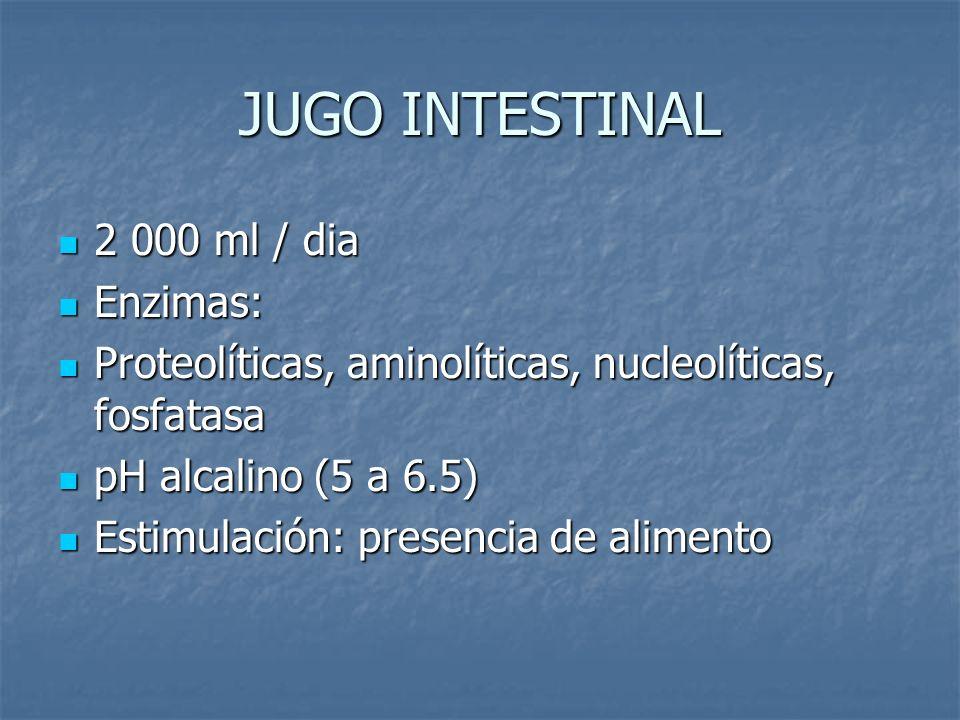 JUGO INTESTINAL 2 000 ml / dia 2 000 ml / dia Enzimas: Enzimas: Proteolíticas, aminolíticas, nucleolíticas, fosfatasa Proteolíticas, aminolíticas, nuc