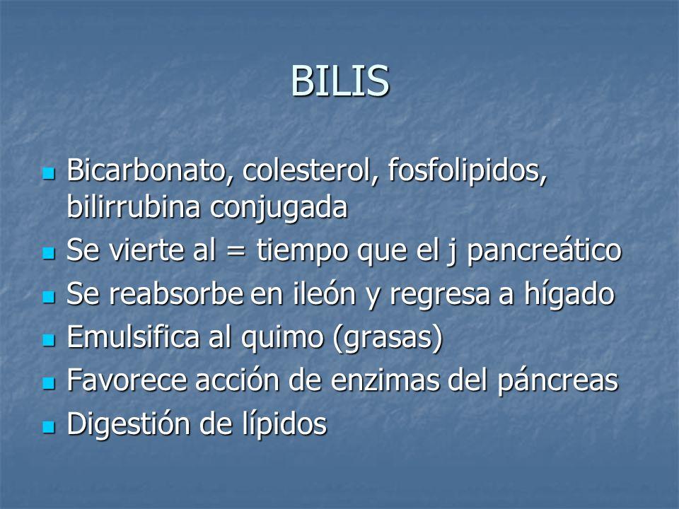 BILIS Bicarbonato, colesterol, fosfolipidos, bilirrubina conjugada Bicarbonato, colesterol, fosfolipidos, bilirrubina conjugada Se vierte al = tiempo