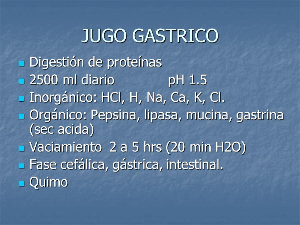JUGO GASTRICO Digestión de proteínas Digestión de proteínas 2500 ml diariopH 1.5 2500 ml diariopH 1.5 Inorgánico: HCl, H, Na, Ca, K, Cl. Inorgánico: H