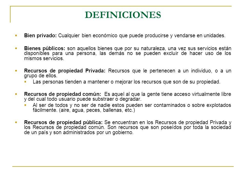 DEFINICIONES Bien privado: Cualquier bien económico que puede producirse y vendarse en unidades.