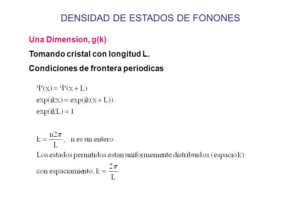 DENSIDAD DE ESTADOS DE FONONES Una Dimension, g(k) Tomando cristal con longitud L. Condiciones de frontera periodicas
