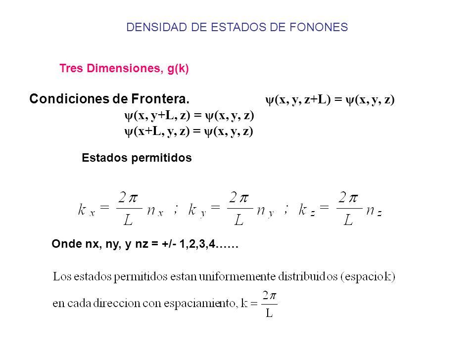 Tres Dimensiones, g(k) Condiciones de Frontera. ψ(x, y, z+L) = ψ(x, y, z) ψ(x, y+L, z) = ψ(x, y, z) ψ(x+L, y, z) = ψ(x, y, z) Estados permitidos Onde