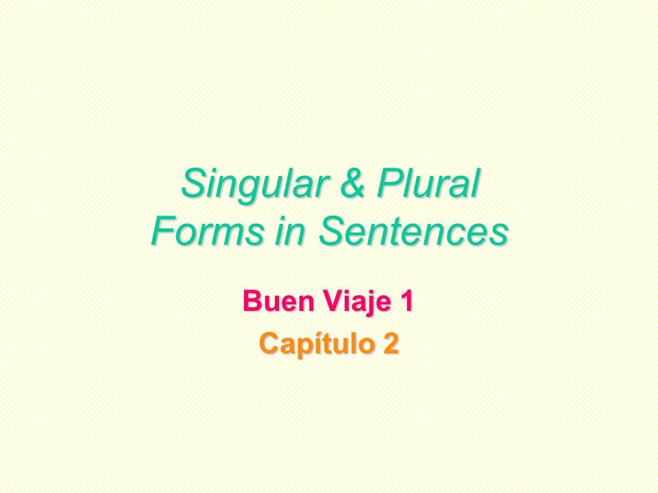 Singular & Plural Forms in Sentences Buen Viaje 1 Capítulo 2