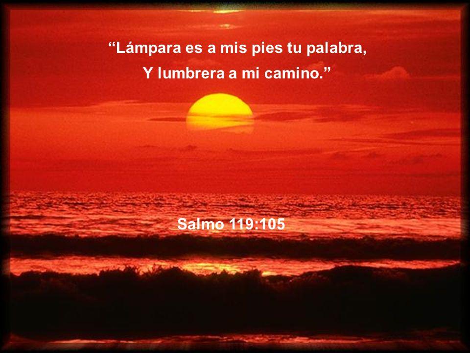 Salmo 118:8 Mejor es confiar en el Señor Que confiar en el hombre.