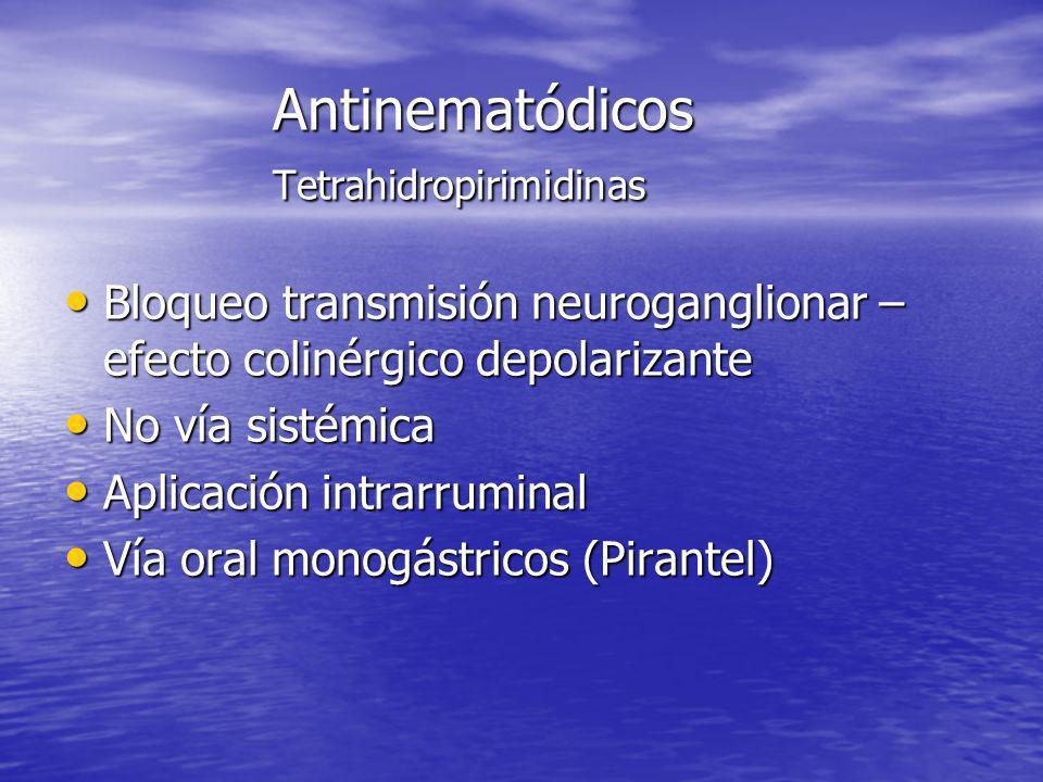 Antinematódicos Tetrahidropirimidinas Bloqueo transmisión neuroganglionar – efecto colinérgico depolarizante Bloqueo transmisión neuroganglionar – efe