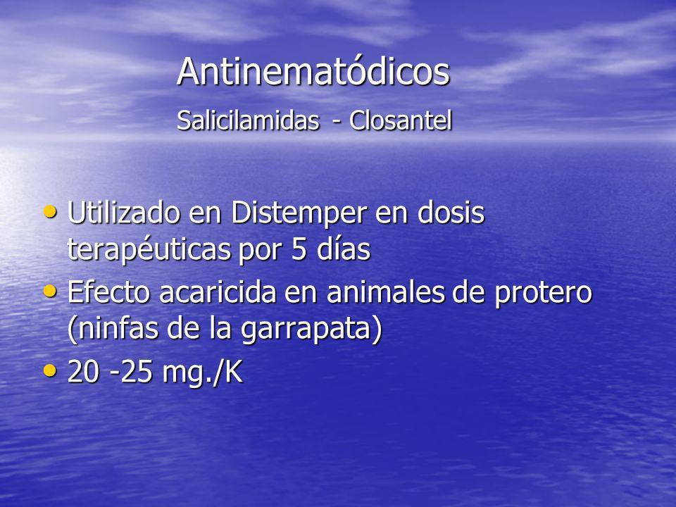Antinematódicos Salicilamidas - Closantel Utilizado en Distemper en dosis terapéuticas por 5 días Utilizado en Distemper en dosis terapéuticas por 5 d