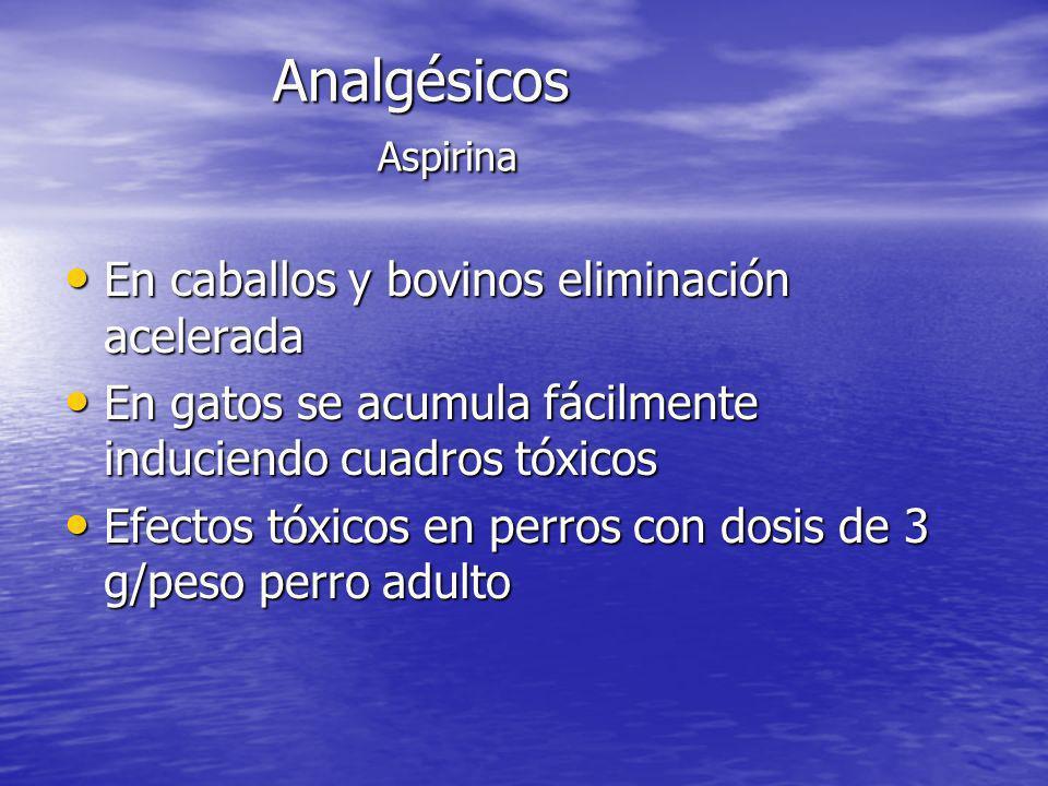 Analgésicos Aspirina En caballos y bovinos eliminación acelerada En caballos y bovinos eliminación acelerada En gatos se acumula fácilmente induciendo