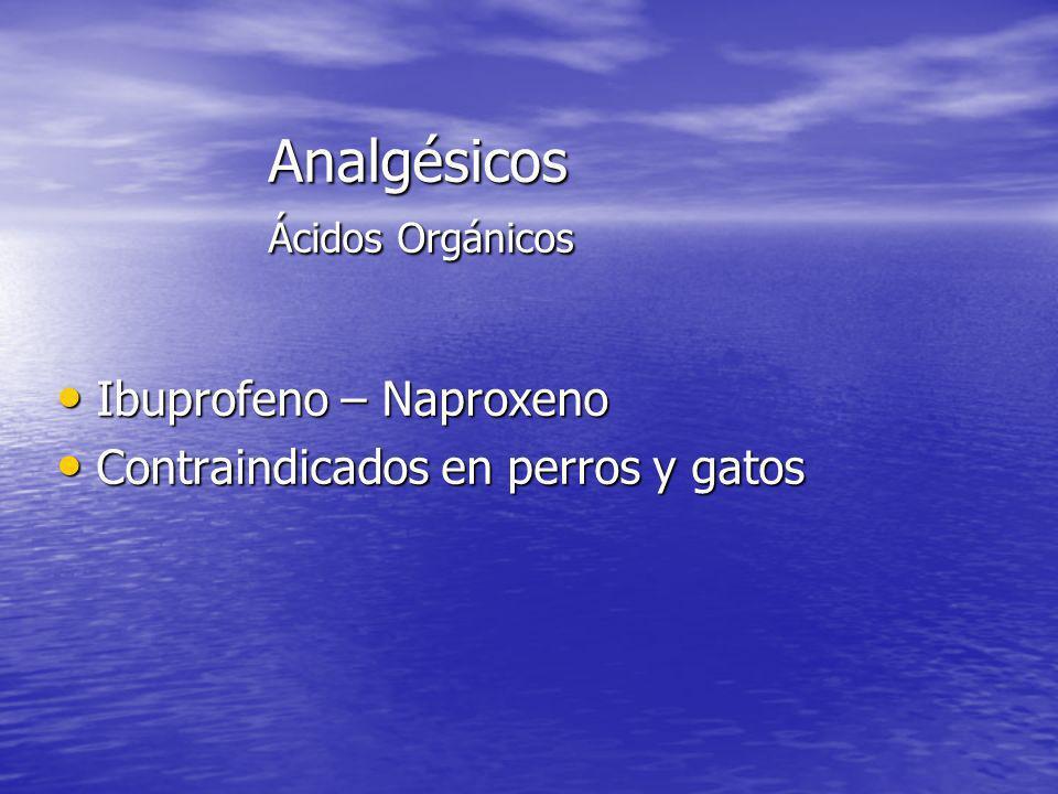 Analgésicos Ácidos Orgánicos Ibuprofeno – Naproxeno Ibuprofeno – Naproxeno Contraindicados en perros y gatos Contraindicados en perros y gatos