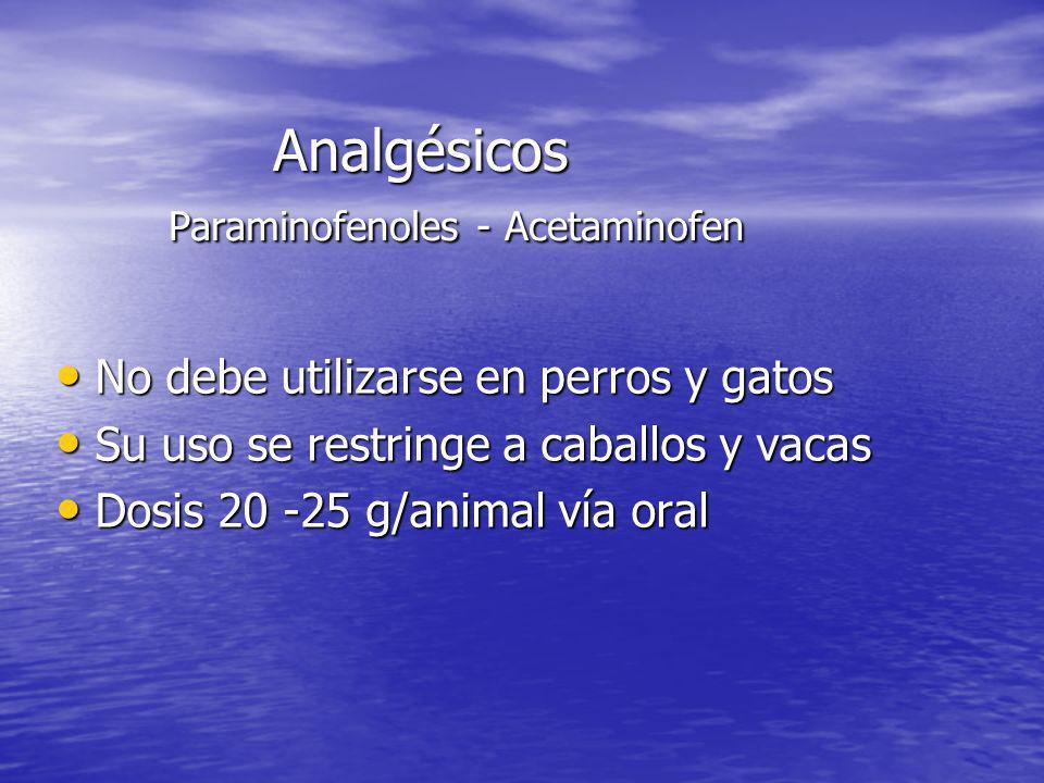 Analgésicos Paraminofenoles - Acetaminofen No debe utilizarse en perros y gatos No debe utilizarse en perros y gatos Su uso se restringe a caballos y
