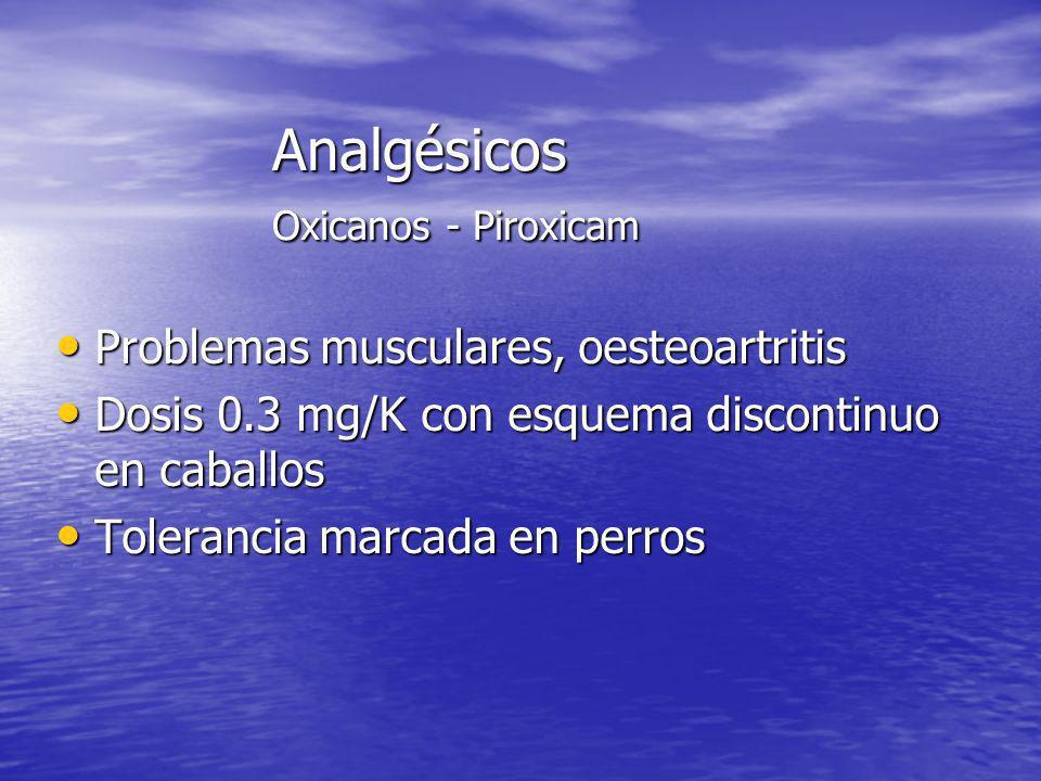 Analgésicos Oxicanos - Piroxicam Problemas musculares, oesteoartritis Problemas musculares, oesteoartritis Dosis 0.3 mg/K con esquema discontinuo en c